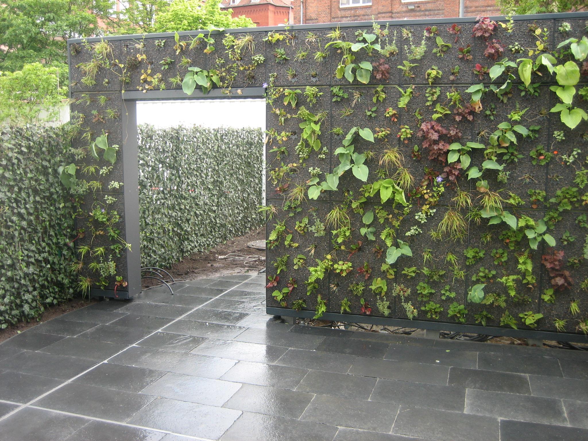 Horizontaler Garten vertikaler garten entwicklung